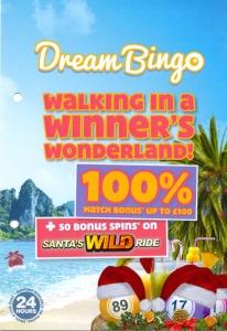 Dream Bingo Flyer Front